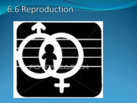 Sexual reproduction is the only method of reproduction in humans Sexual reproduction involves the fusion of specialised sex cells (gametes):- sperm (male.