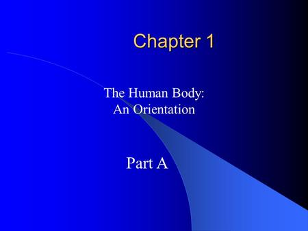 Chapter 1 The Human Body: An Orientation Part A Overview of Anatomy and Physiology Anatomy – the study of the structure of body parts and their relationships.