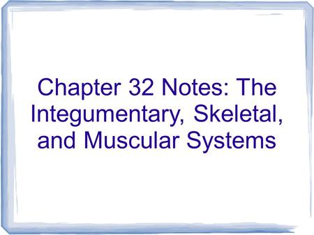 Chapter 32 Notes: The Integumentary, Skeletal, and Muscular Systems