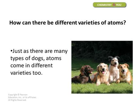 Copyright © Pearson Education, Inc., or its affiliates. All Rights Reserved. Just as there are many types of dogs, atoms come in different varieties too.