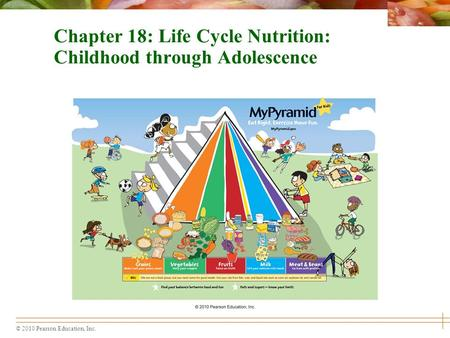 lifecycle nutrition and fitness presentation on adolescent Free fitness presentations and free fitness programs fitness presentations - fitness programs miscellaneous fitness presentations.