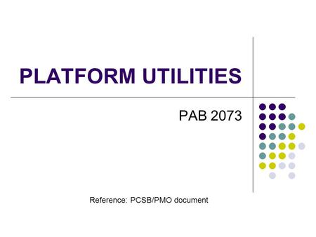 PLATFORM UTILITIES PAB 2073 Reference: PCSB/PMO document.