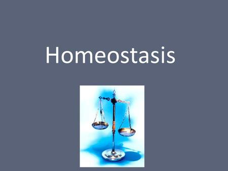 Homeostasis. What is Homeostasis? The ability to maintain constant internal physical and chemical conditions All living things must do this to survive.