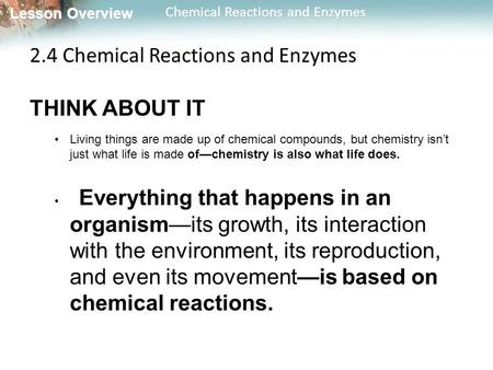 2.4 Chemical Reactions and Enzymes THINK ABOUT IT