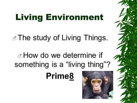 Living Environment Prime8 The study of Living Things.