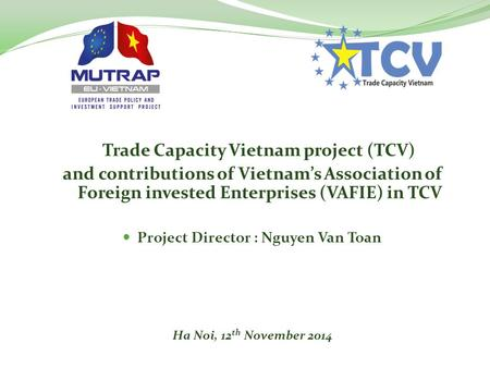 Trade Capacity Vietnam project (TCV) and contributions of Vietnam's Association of Foreign invested Enterprises (VAFIE) in TCV Project Director : Nguyen.