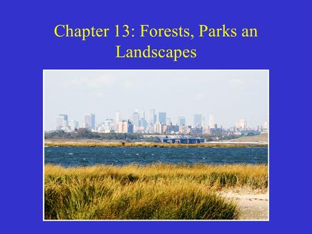 Chapter 13: Forests, Parks an Landscapes. Modern Conflicts over Forestland and Forest Resources In recent decades forest conservation has become an international.