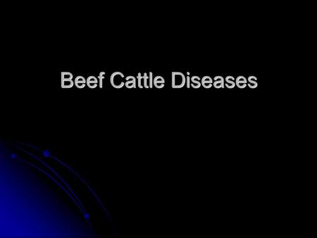 Beef Cattle Diseases. Anthrax Spores stay in the ground Spores stay in the ground No treatment No treatment Vaccinate against Vaccinate against.