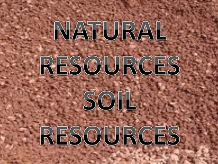 1.Introduction 2.Prior Knowledge 3.Soil resources 4.Where does soil come from? 5.Why are soil resources important? 6.What is soil conservation? 7.Is soil.