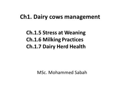 Ch.1.5 Stress at Weaning Ch.1.6 Milking Practices Ch.1.7 Dairy Herd Health MSc. Mohammed Sabah Ch1. Dairy cows management.