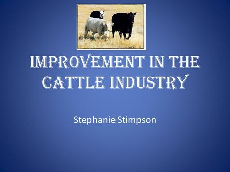Improvement in the Cattle Industry Stephanie Stimpson.