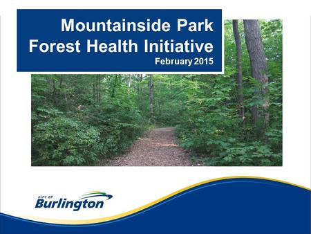 Mountainside Park Forest Health Initiative February 2015.