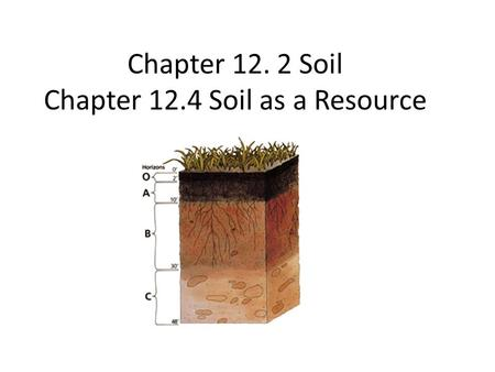 Chapter Soil Chapter 12.4 Soil as a Resource