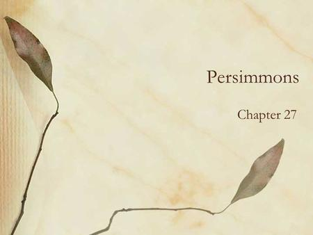 Persimmons Chapter 27.