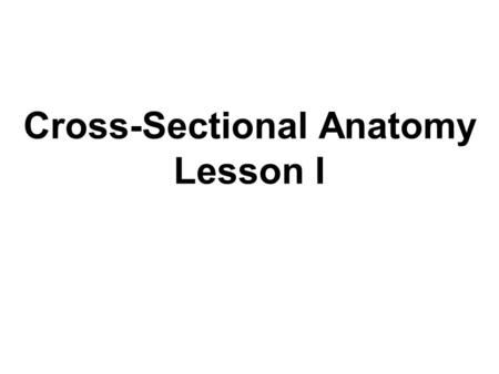Cross-Sectional Anatomy Lesson I