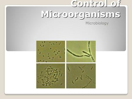 Control of Microorganisms Microbiology Control of Microbial Growth Effected in two basic ways: 1. Biocidal action: Killing Microorganisms 2. Biostatic.