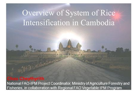 Overview of System of Rice Intensification in Cambodia Chou Cheythyrith National FAO-IPM Project Coordinator, Ministry of Agriculture Forestry and Fisheries,