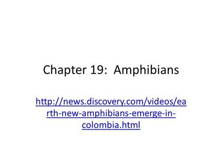 Chapter 19: Amphibians  rth-new-amphibians-emerge-in- colombia.html.