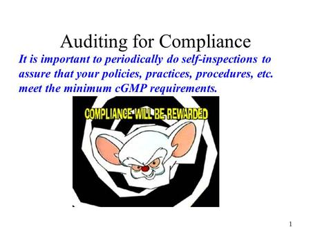 Auditing for Compliance