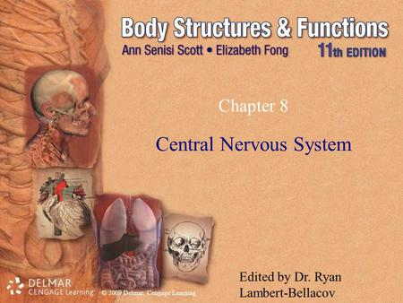 © 2009 Delmar, Cengage Learning Chapter 8 Central Nervous System Edited by Dr. Ryan Lambert-Bellacov.