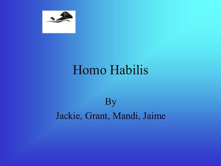 Homo Habilis By Jackie, Grant, Mandi, Jaime Physical Appearance Homo Habilis were 4.5 feet tall. Their feet were made for walking upright, unlike Australopithecus.