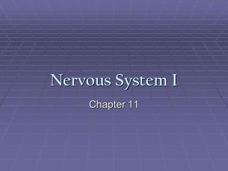Nervous System I Chapter 11. Nervous System  The nervous system is the master controlling and communicating system of the body  Every thought, action,