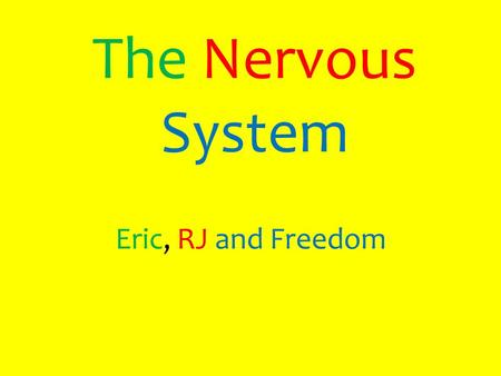 The Nervous System Eric, RJ and Freedom. Table of Contents 1.The role the Nervous System plays in the human body 2.The major organs of the Nervous System.