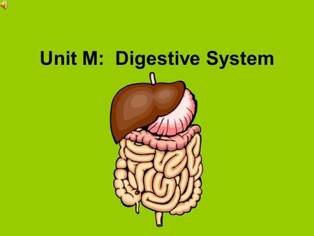 Unit M: Digestive System Analyze the anatomy and physiology of the digestive system. Specific Objectives: 1H13.01 Explain the structure of the digestive.