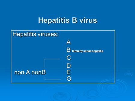 Hepatitis B virus Hepatitis viruses: A B formerly serum hepatitis C D non A nonB E G.