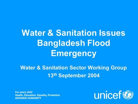 Water & Sanitation Issues Bangladesh Flood Emergency Water & Sanitation Sector Working Group 13 th September 2004.