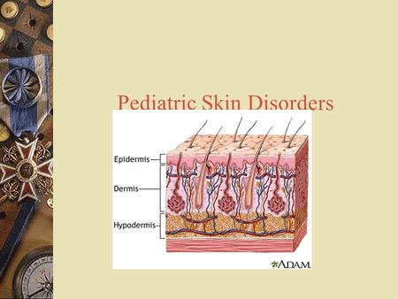 Pediatric Skin Disorders. Compare skin differences  Infant: skin not mature at birth  Adolescence: sebaceous glands become enlarged & active.