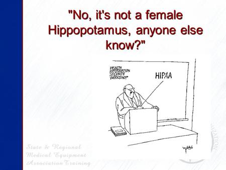 No, it's not a female Hippopotamus, anyone else know?