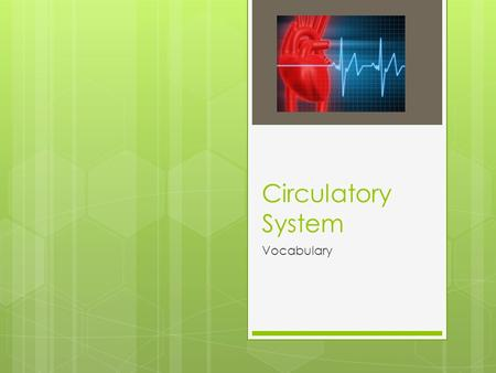 Circulatory System Vocabulary. 54% Plasma – the liquid part of the blood that is mostly water. It contains dissolved nutrients and waste products; such.