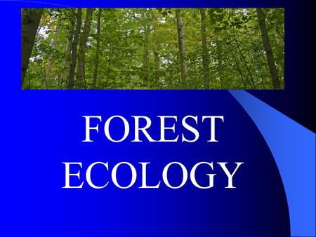 FOREST ECOLOGY. DELAWARE HAS 355,00 ACRES OF FORESTED LAND! Approx. 5,000 acres of timber are harvested annually. Delaware's forest products industries.