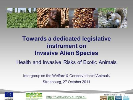 Towards a dedicated legislative instrument on Invasive Alien Species Health and Invasive Risks of Exotic Animals Intergroup.