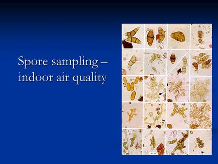 Spore sampling – indoor air quality