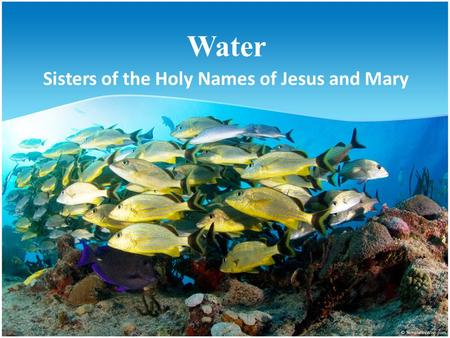 Water Sisters of the Holy Names of Jesus and Mary.