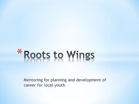 Mentoring for planning and development of career for local youth.