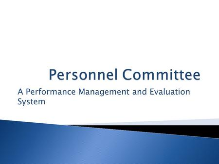 "A Performance Management and Evaluation System.  Compliance with BHECM Guidance  Identification of ""Best Practice Standards""  A Job Description Review."