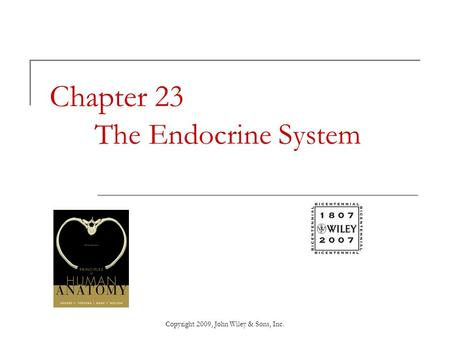 Chapter 23 The Endocrine System