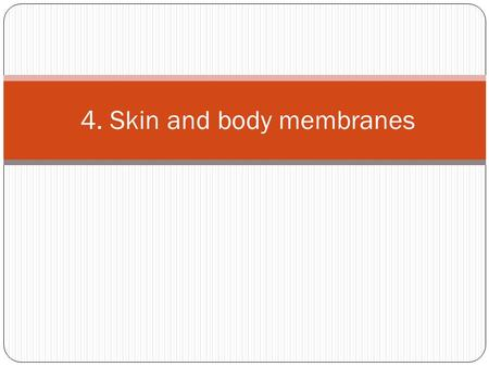 4. Skin and body membranes