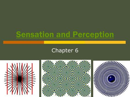 Sensation and Perception Chapter 6. Sensation vs. Perception  Psychophysics: The study of the relationship between physical stimuli and our experience.