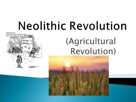 (Agricultural Revolution). © CSCOPE 2008 Geographic factors that allow advances in agriculture create a stable food supply which permits the development.
