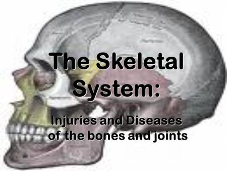 The Skeletal System: Injuries and Diseases of the bones and joints of the bones and joints.