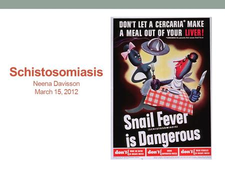 Schistosomiasis Neena Davisson March 15, 2012. Schistosomiasis is a parasitic infection Schistosomiasis is caused by a trematode helminth.