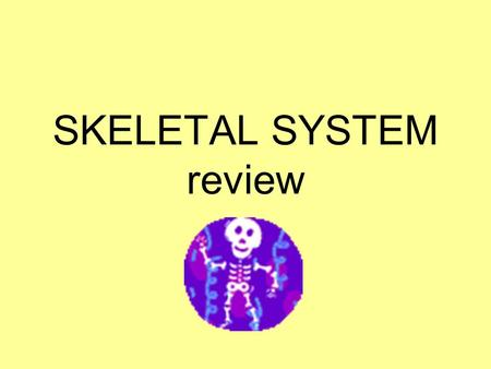 SKELETAL SYSTEM review. Major Functions The skeletal system has several functions…