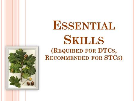 E SSENTIAL S KILLS (R EQUIRED FOR DTC S, R ECOMMENDED FOR STC S )