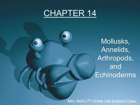 CHAPTER 14 Mollusks, Annelids, Arthropods, and Echinoderms