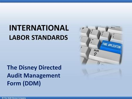 © The Walt Disney Company INTERNATIONAL LABOR STANDARDS The Disney Directed Audit Management Form (DDM)
