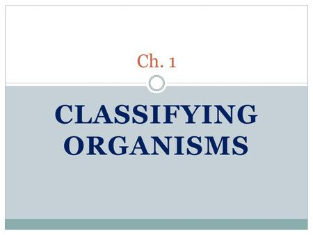 CLASSIFYING ORGANISMS Ch. 1. Vocabulary Classify- to put things into groups Kingdom- the highest or most general group of organisms Phylum- the second.